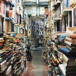 Novembre et Décembre : Bibliothèque Humaine #2